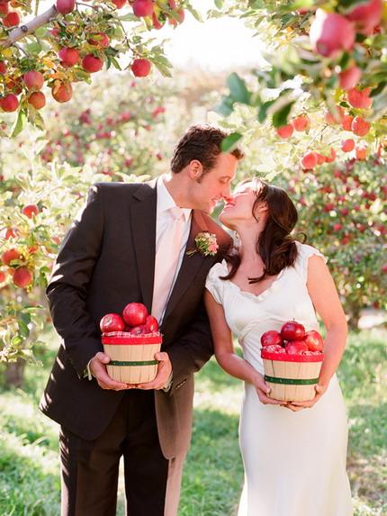 recueillir des pommes pendant mariage dans le verger